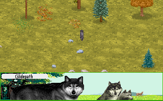 Image of: Cat Sanctuary Woods Wolf And Lion Games Were Afair Pretty Much The Only Attempts At Realistic Animal Games Neogaf Really Want Good Realistic Animal Simulator Neogaf
